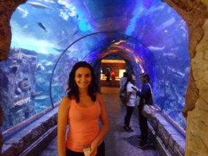 Interior do aquário Shark Reef